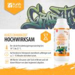 Graffitientferner, FURTEC GraffitiEx